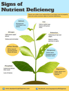 integrated plant nutrient management